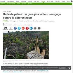 20MINUTES 10/02/11 Huile de palme: un gros producteur s'engage contre la déforestation
