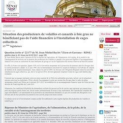 JO SENAT 19/04/12 Question écrite n° 22177 Situation des producteurs de volailles et canards à foie gras ne bénéficiant pas de l