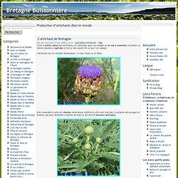 Production d'artichauts dans le monde - Bretagne Buissonnière