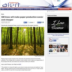 GM trees will make paper production easier and cheaper