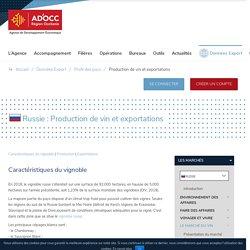 Production de vin et exportations - Russie