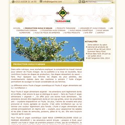 PRODUCTION HUILE D'ARGAN