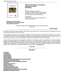 FAO - 2004 - PRODUCTION MANUAL FOR BELES (Opuntia ficus-indica) IN ERITREA