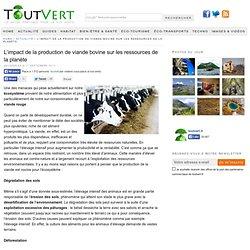 L'impact de la production de viande bovine sur les ressources de la planète