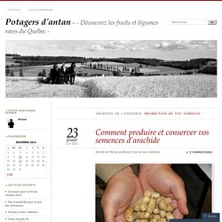Production de vos semences « Potagers d'antan