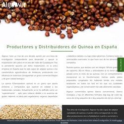 Productores de quinoa en españa - Venta de quinoa en españa