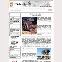 Productos de la Tierra, Diputación de Ávila.