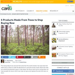 5 Products From Trees To Stop Buying