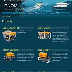 Products — GNOM