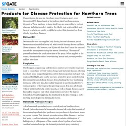Products for Disease Protection for Hawthorn Trees