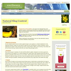 Natural Slug Control: Safe, Non-toxic products, solutions & formulas for controlling slugs