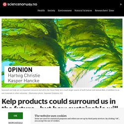 Kelp products could surround us in the future - but how sustainable will the industry be?