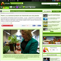 Plant-e, ou comment produire de l'électricité avec des plantes