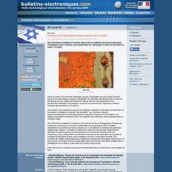 2013/09/30> BE Israël92> Produire de l'hydrogène solaire à partir de la rouille