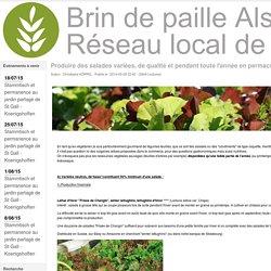 Produire des salades variées, de qualité et pendant toute l'année en permaculture