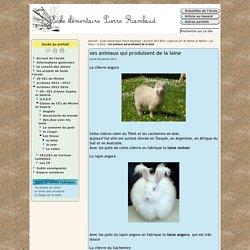 ces animaux qui produisent de la laine - Webécoles du Haut-Grésivaudan