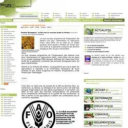 Produits Biologiques : la FAO crée un nouveau projet en Afrique