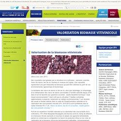 VIGNEVIN - JANV 2017 - Atlas - projet biomasse vitivinicole.