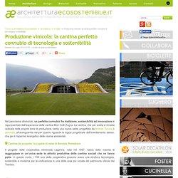 Produzione vinicola: la cantina perfetto connubio di tecnologia e sostenibilità
