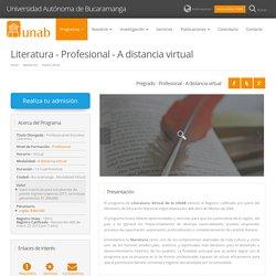 Literatura - Profesional - A distancia virtual