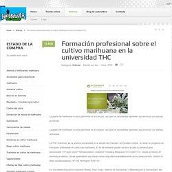 Formación profesional sobre el cultivo marihuana en la universidad THC