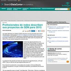 Profesionales de redes describen sus proyectos de SDN para 2015