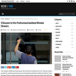5 Reasons to Hire Professional Auckland Window Cleaners
