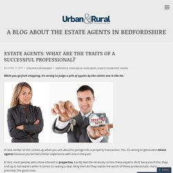 Estate Agents: What Are the Traits of a Successful Professional?