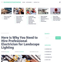 Here is Why You Need to Hire Professional Electrician for Landscape Lighting - businesstimesnow