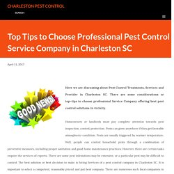 Top Tips to Choose Professional Pest Control Service Company in Charleston SC