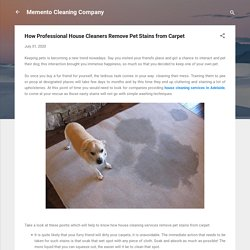 How Professional House Cleaners Remove Pet Stains from Carpet