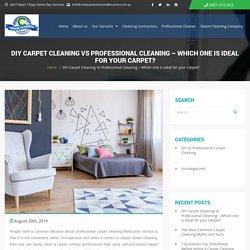 DIY Vs Professional Carpet Cleaning