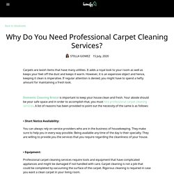 Why Do You Need Professional Carpet Cleaning Services?