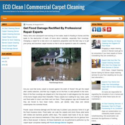 Get Flood Damage Rectified By Professional Repair Experts