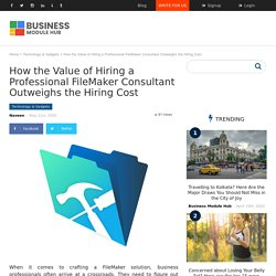 How the Value of Hiring a Professional FileMaker Consultant Outweighs the Hiring Cost – Business Module Hub