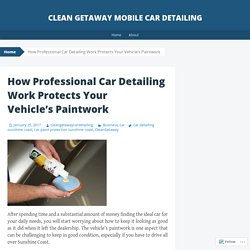 How Professional Car Detailing Work Protects Your Vehicle's Paintwork