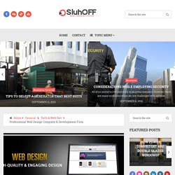 Professional Web Design Company & Development Firm