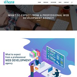 What to expect from a professional web development agency