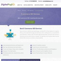 Ecommerce SEO Services India – Professional Ecommerce SEO Company India