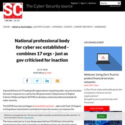 National professional body for cyber sec established - combines 17 orgs - just as gov criticised for inaction