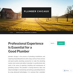 Professional Experience Is Essential for a Good Plumber