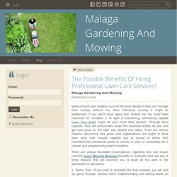 The Possible Benefits Of Hiring Professional Lawn Care Services?