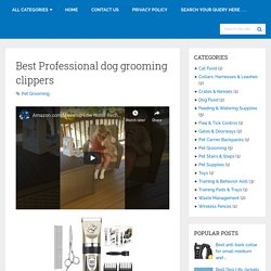 Best Professional Dog Grooming Clippers