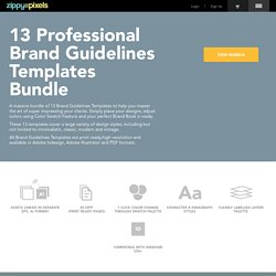 13 Professional Brand Guidelines Templates Bundle