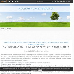 Gutter Cleaning - Professional or DIY which is best?