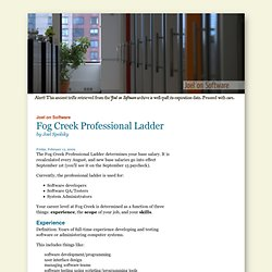 Fog Creek Professional Ladder