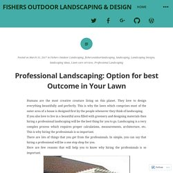 Professional Landscaping: Option for best Outcome in Your Lawn