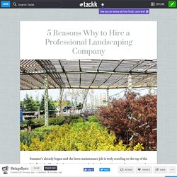 5 Reasons Why to Hire a Professional Landscaping Company