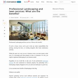Professional Landscaping and lawn services: What are the benefits?