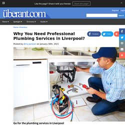 Why You Need Professional Plumbing Services in Liverpool?